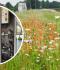 Replacement UVEX Unit at Wrexham Industrial Estate